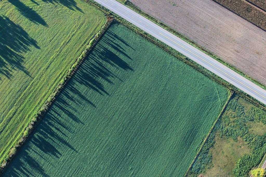 Bio-dynamic farm
