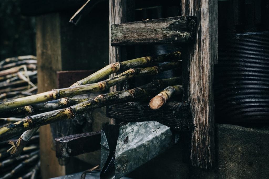 Sugar Cane Pressed
